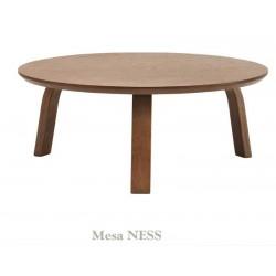 Mesa NES