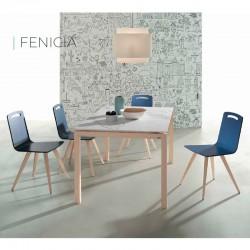 Mesa FENICIA